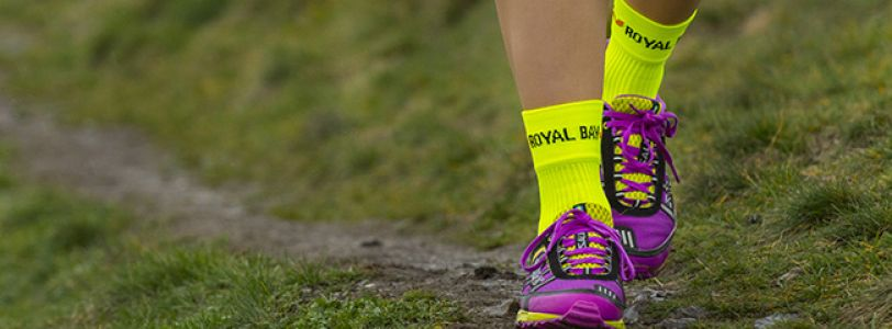 Sports Socks ROYAL BAY<sup>®</sup> Neon HIGH-CUT